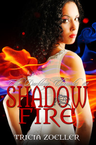 ShadowFire_ebook